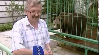 Медведица Маша предсказала исход матча Россия — Египет