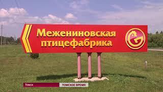 Смрад над Томском: кто виноват и что делать