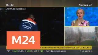 Двое пострадавших при урагане в столице находятся в тяжелом состоянии - Москва 24