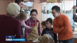 В преддверии Дня геолога: В уфимском музее геологии и полезных ископаемых прошла экскурсия для детей