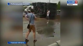 Массовая авария в Томске: на трассе столкнулись 14 автомобилей