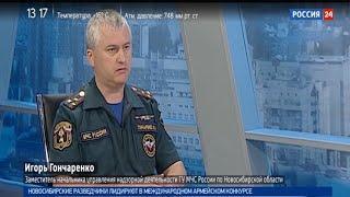 МЧС: в Новосибирской области стало больше пожаров