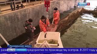 Смоленщина продолжит поддерживать развитие товарного рыбоводства