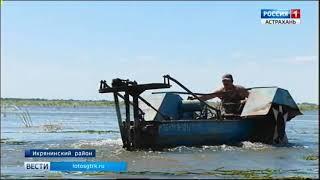 В дельте Волги от ила и растительности очищают рыбоходные каналы