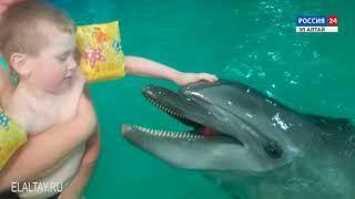 Подарите ребенку дельфинов и море!