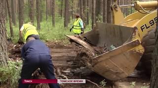 В Томске ликвидировали 47 незаконных свалок