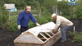 Пензенским дачникам советуют позаботиться об огороде