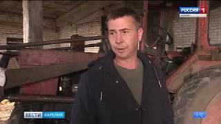 """Совхоз """"Ведлозерский"""" в ожидании нового инвестора"""