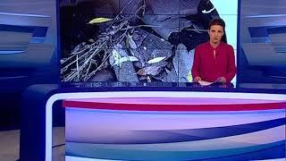 В Ростовском районе воспитательница детского сада упала в канализационный люк и захлебнулась