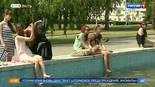 В конце недели на Алтай могут вернуться ураганы