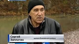 Анонс: уникальная река Татарка, в которой нерестились редкие виды рыбы, погибает