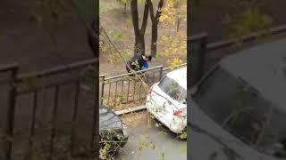 """Что оказалось на месте """"закладки"""", обнаруженной в парке им. Суханова во Владивостоке?"""