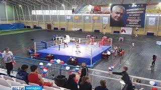 Боксерский турнир памяти Бурмистрова – финальные бои юниоров