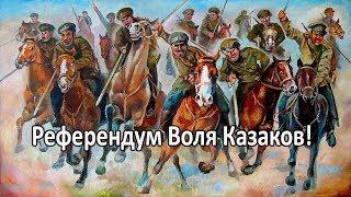 Митинг 9 сентября 2018 года в Санкт-Петербурге глазами Казаков