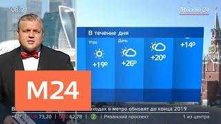 """""""Утро"""": теплая сухая погода ожидается в Москве 31 июля - Москва 24"""