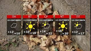 Осень с ветром и солнцем вступает в свои права