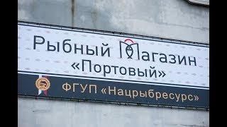 В порту Калининграда открыли социальный рыбный магазин