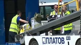Осенью из Платова откроют рейсы в пять городов России