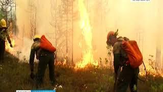 Из-за сухих гроз в труднодоступных районах Красноярского края горят леса