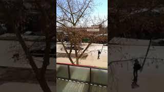 Обрушение коллектора на С. Шило в Таганроге 13.3.2018 Ростов-на-Дону Главный