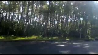 В Ярославле на Резинотехнике в ДТП погиб человек
