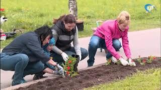 Жители Завокзального микрорайона устроили у себя зеленый субботник