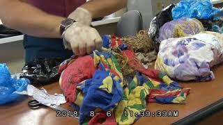 Контрабанду женьшеня на 7 млн рублей в Китай предотвратила приморская таможня
