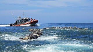 Страшная находка у берегов Мексики
