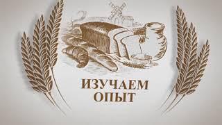 «Хлебный край»: о роли аграрного вуза в стратегическом планировании развития отрасли