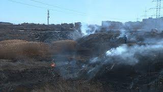 В Краснооктябрьском районе локализовано возгорание камыша