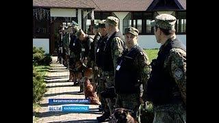 В Калининградской области прошли состязания служебных собак