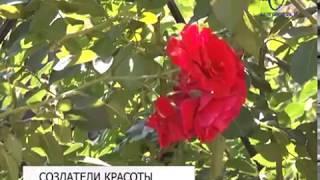 Пруд и более 60 видов растений украшают лучший частный двор Восточного округа