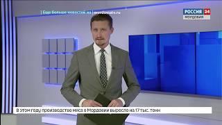 Владимир Волков провел рабочую встречу с венгерскими инвесторами