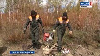 В республике Бурятия отряды добровольцев помогают пожарным тушить торфяники
