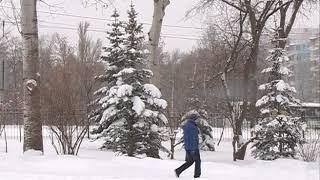 Снегопад в Самарской области прогнозируют в течение всего дня