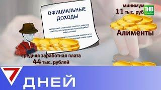 Общие долги по алиментам у жителей Татарстана превысили 3 млрд рублей | 7 Дней - ТНВ