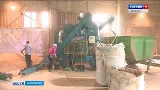 Смоленские аграрии приступили к уборке зерновых