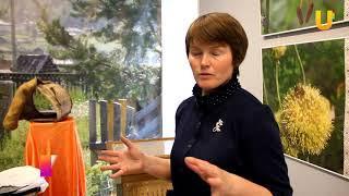 UTV. Гигантский улей могут посетить жители и гости Башкирии