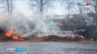 Смоленские спасатели ловят поджигателей травы
