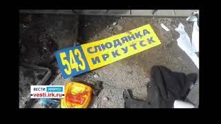 Два человека погибли в ДТП сегодня в Шелеховском районе