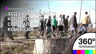 """В Подмосковье вовсю идет подготовка к акции """"Лес победы"""""""