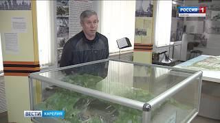 Задержан директор Медвежьегорского музея