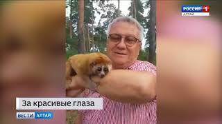 Глазастый лори поселился в зоопарке Барнаула