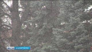 В Башкирии ожидаются неблагоприятные погодные условия
