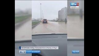 Вести Санкт-Петербург. Выпуск 17:00 от 7.11.2018