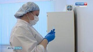 После ЧП с прививками в крае приостановлена вакцинация против клещевого энцефалита
