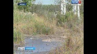 Директора новочебоксарского филиала «Управления отходами» обвинили в совершении экологического прест