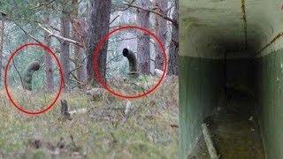 दो लड़कों को घने जंगल में दिखीं दो रहस्यमयी सुरंग,दोनों ने अंदर जाकर देखा नजारा तो दहल गया दिल