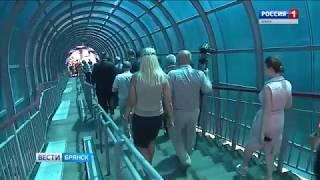 На станции Брянск-Льговский открыт пешеходный мост