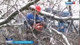 Зима на Ставрополье не уступает место весне